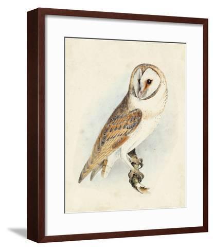 Meyer Barn Owl-H^ l^ Meyer-Framed Art Print