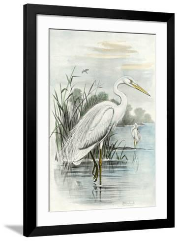 White Heron-Unknown-Framed Art Print