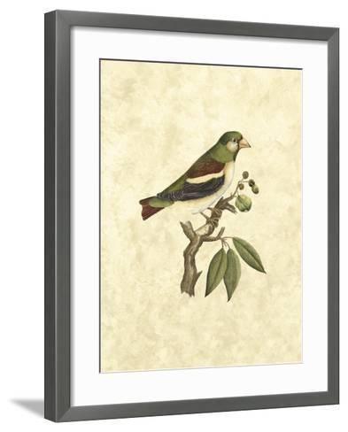 Selby Birds V-John Selby-Framed Art Print