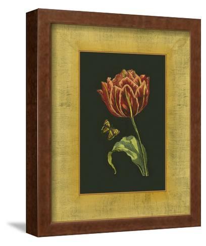 Tulip in Frame III--Framed Art Print