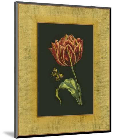 Tulip in Frame III--Mounted Art Print