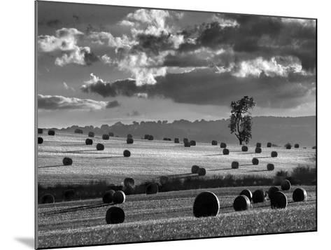 Rolls of Hay-Martin Henson-Mounted Giclee Print