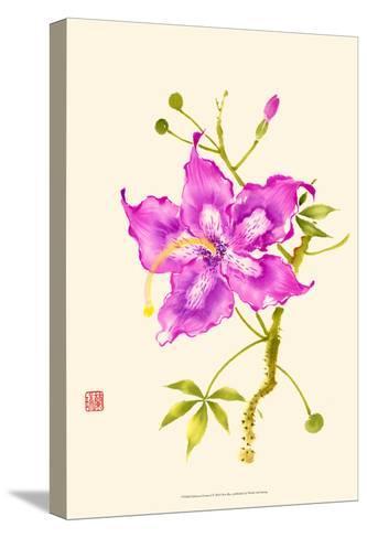 Hibiscus Flower I-Nan Rae-Stretched Canvas Print