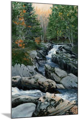 Cascades dans les Bois-Francs-Sylvia Audet-Mounted Art Print