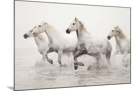 Escape-Irene Suchocki-Mounted Giclee Print