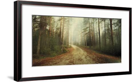 Misty Trail-Andreas Stridsberg-Framed Art Print