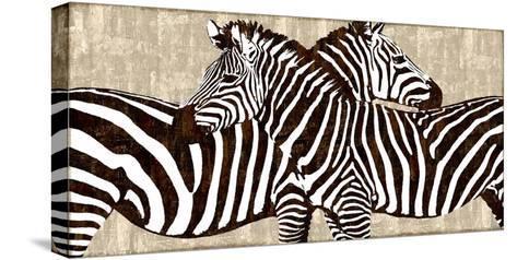 Zebra Gathering-Darren Davison-Stretched Canvas Print