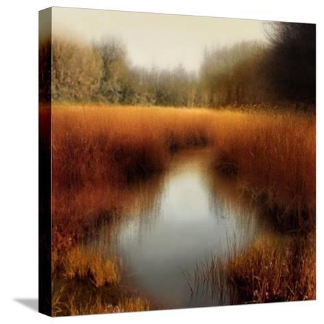 Sunlit Pond II-Madeline Clark-Stretched Canvas Print