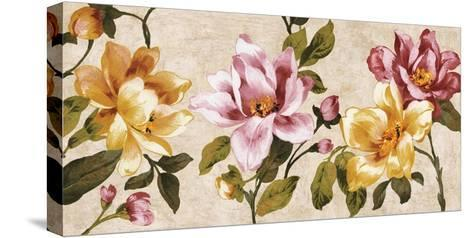 Pink Meets Yellow-Pamela Davis-Stretched Canvas Print