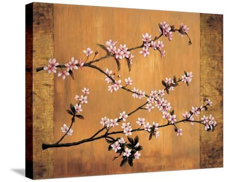 Cherry Blossoms-Erin Lange-Stretched Canvas Print