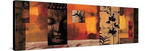 Dharma I-Chris Donovan-Stretched Canvas Print