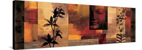 Dharma II-Chris Donovan-Stretched Canvas Print