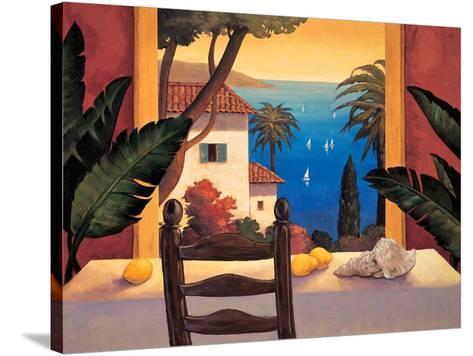 Ocean Breeze I-Elizabeth Wright-Stretched Canvas Print