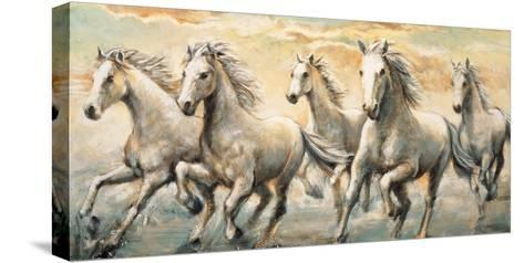 Wild Horses-Ralph Steele-Stretched Canvas Print