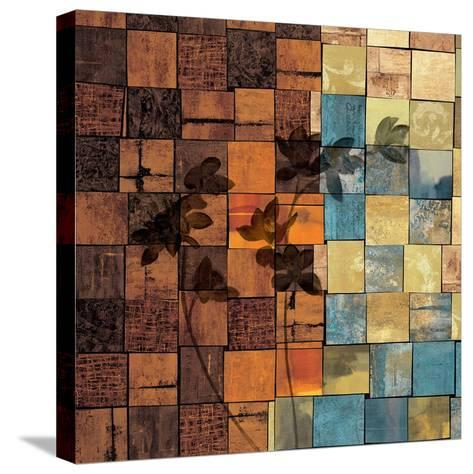 Segments II-Marcia Wells-Stretched Canvas Print