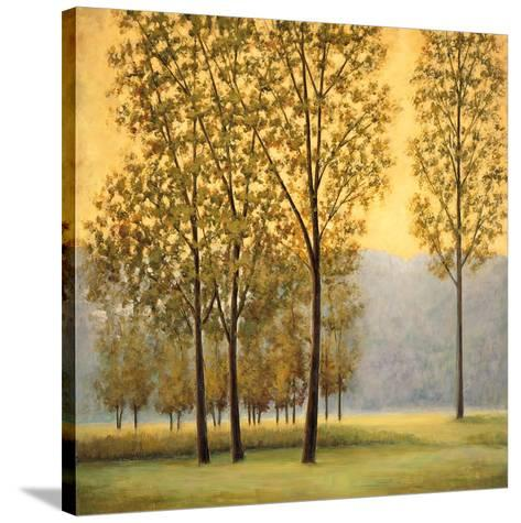 Misty Morning II-Neil Thomas-Stretched Canvas Print