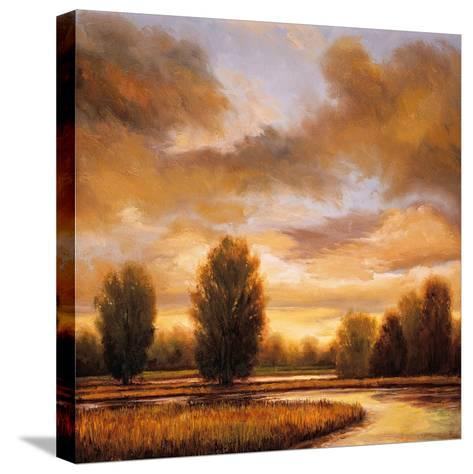 Away from It All I-Ryan Franklin-Stretched Canvas Print