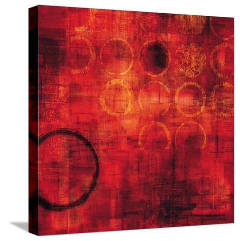 Rojo-Brent Nelson-Stretched Canvas Print