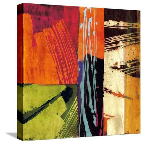 Colors II-Andy James-Stretched Canvas Print