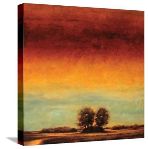 Transformation II-Gregory Williams-Stretched Canvas Print