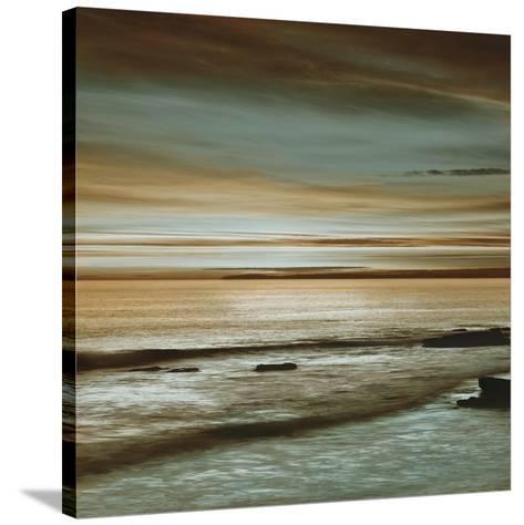 Hightide-John Seba-Stretched Canvas Print