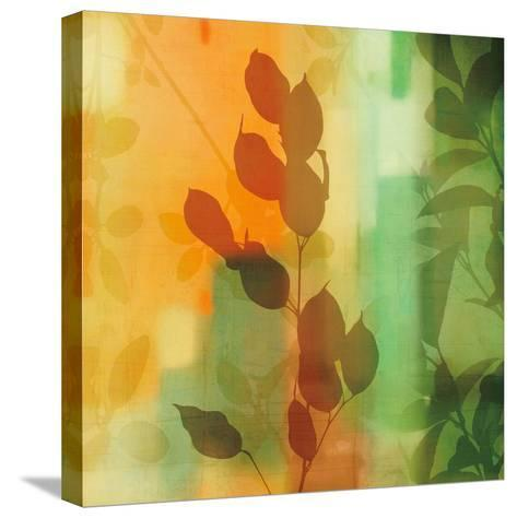 Nature's Glow II-Chris Donovan-Stretched Canvas Print