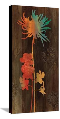 Companions I-Chris Donovan-Stretched Canvas Print