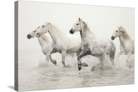 Escape-Irene Suchocki-Stretched Canvas Print