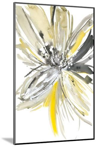 A Sunny Bloom-Rebecca Meyers-Mounted Giclee Print