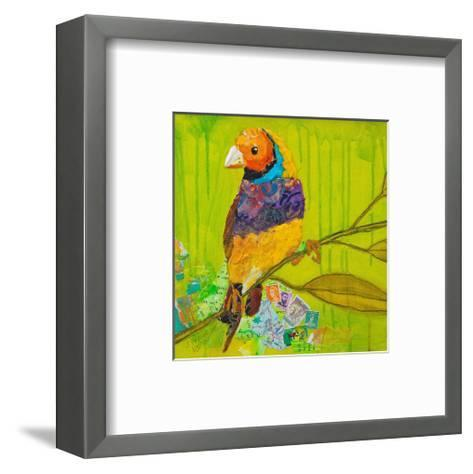 Gouldian Finch--Framed Art Print