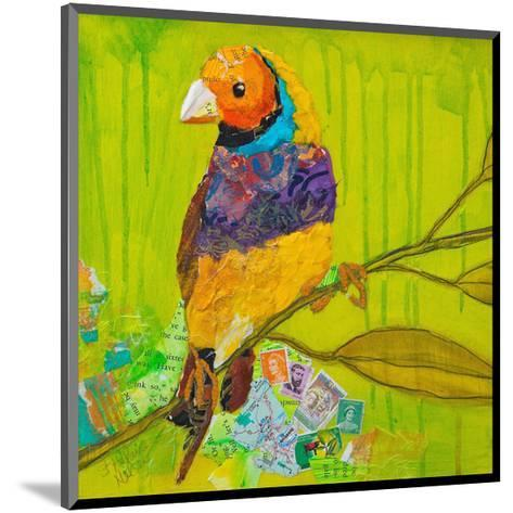 Gouldian Finch--Mounted Art Print