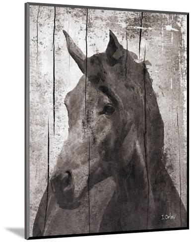 Horse Lemuse--Mounted Art Print