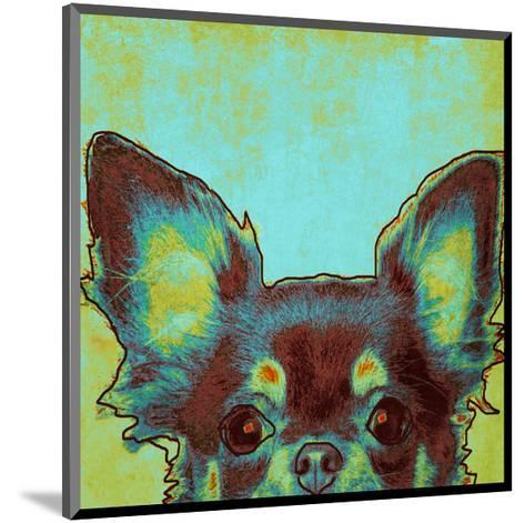 Chihuahua--Mounted Art Print