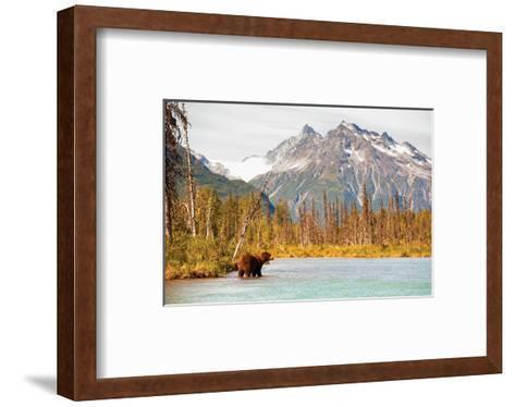 Natural Splendors Alaska IV--Framed Art Print