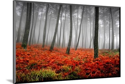 Red Flowers in a Foggy Forest--Mounted Art Print
