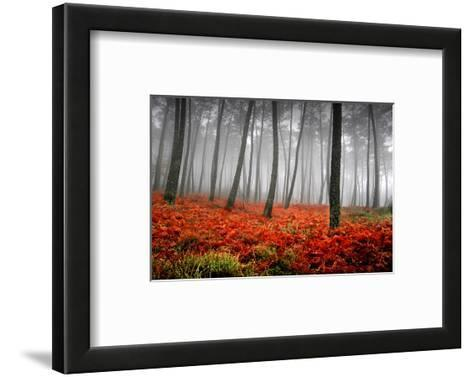 Red Flowers in a Foggy Forest--Framed Art Print
