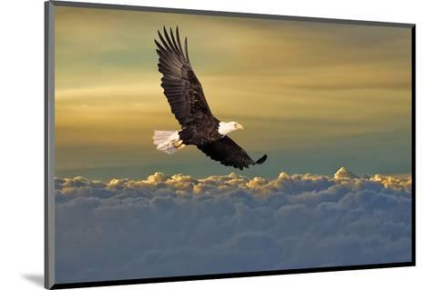 Bald Eagle Flying Above Clouds--Mounted Art Print