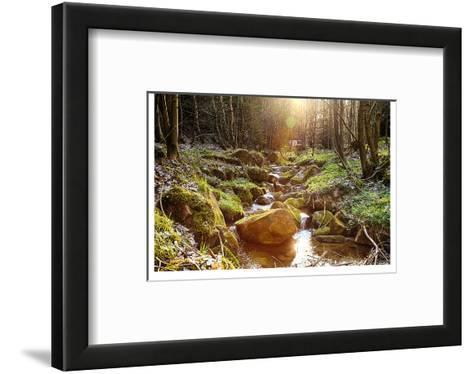 River Boulders Primeval Forest--Framed Art Print
