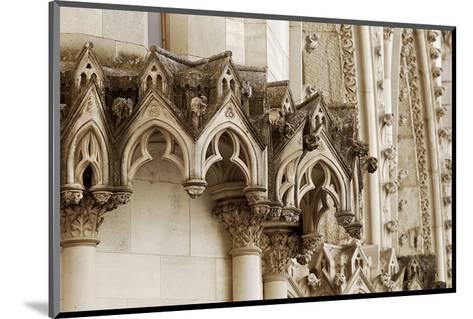 Gothic Cathedral Stone Detail--Mounted Art Print