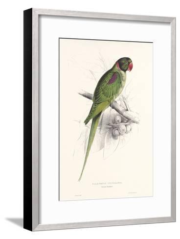 Hooded Parakeet-Edward Lear-Framed Art Print