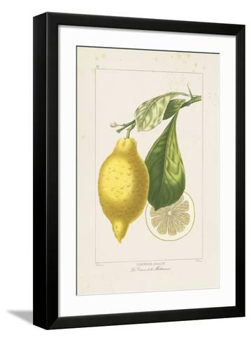 Les Citrons II-A^ Poiteau-Framed Art Print