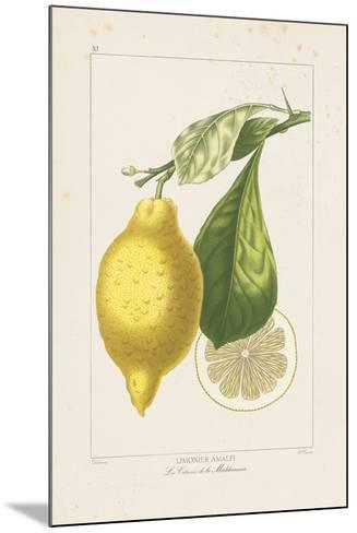 Les Citrons II-A^ Poiteau-Mounted Giclee Print