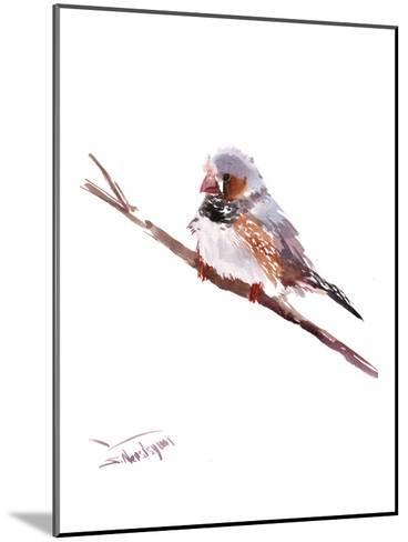 Zebrafinch-Suren Nersisyan-Mounted Art Print