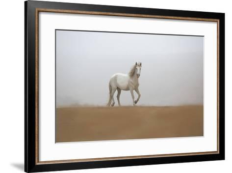 White Stallion-Sally Linden-Framed Art Print