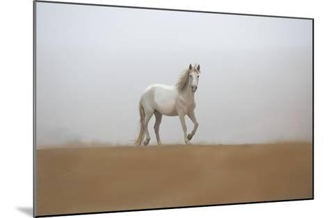 White Stallion-Sally Linden-Mounted Art Print