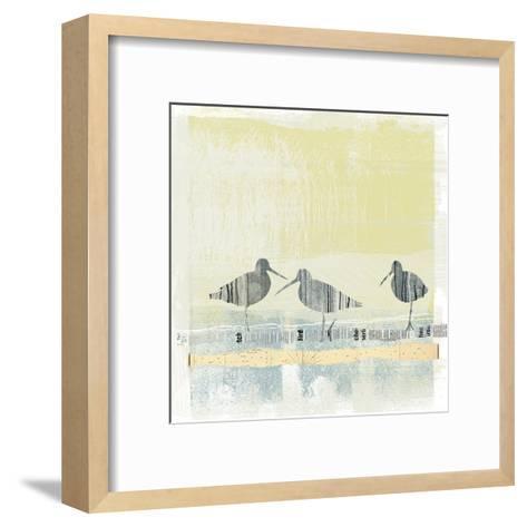 Coastal Birds II-Ken Hurd-Framed Art Print
