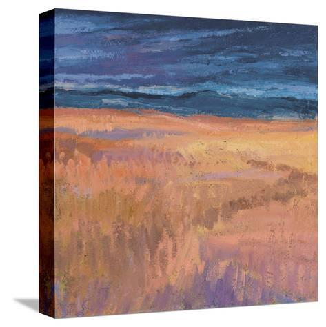 Deep Sky and Field-Jeannie Sellmer-Stretched Canvas Print