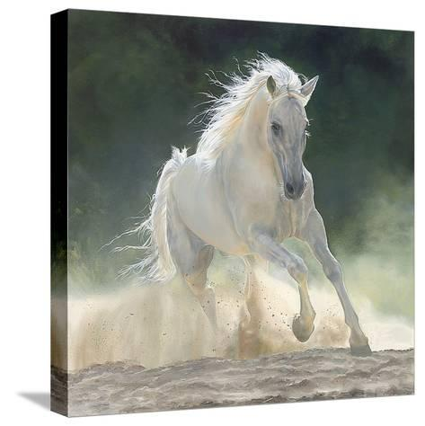 Rhapsody-Marie Channer-Stretched Canvas Print