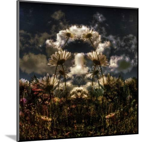 Miror floral I-Jean-Fran?ois Dupuis-Mounted Art Print