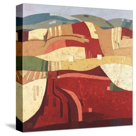 Revivido 33-Julian Recio-Stretched Canvas Print